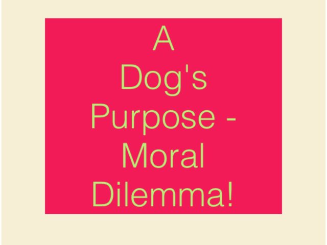 A Dog's Purpose – moral dilemma!